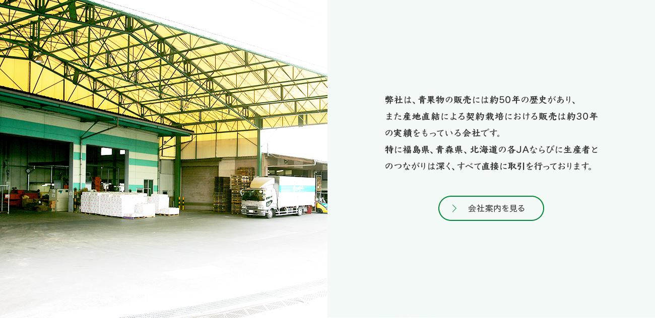 弊社は、青果物の販売には約50年の歴史があり、また産地直結による契約栽培における販売は約30年の実績をもっている会社です。 特に福島県、青森県、北海道の各JAならびに生産者とのつながりは深く、すべて直接に取引を行っております。